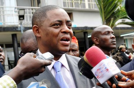 Fani-Kayode Orders Clinton, Biden, To Shut Up And Jump Into The Lagoon, For Forcing A Maniac, A Cruel Tyrant, And A Monster On Nigerians In 2015