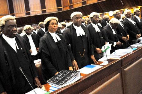 It Is Very Unusual To See Lawyers Down Their Tools And Become Like The Ordinary Folks Seeking Employment; By Ebun-Olu Adegboruwa