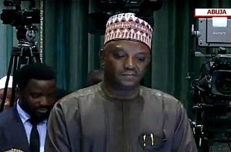 Minister Of Power, Saleh Mamman, Apologises On Behalf Of President Buhari To Nigerians, For The Crash Of 8 Power Plants In The Country, And 7 Other Integrated Power Plants Experiencing Gas Constraints