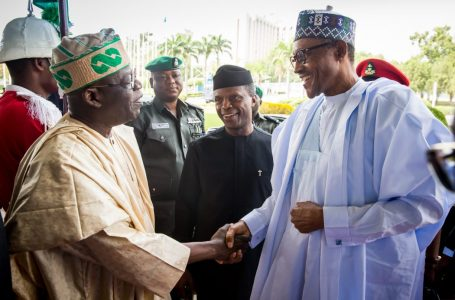 APC National Leader, Bola Tinubu, Jumps Off President Buhari's Sinking Ship Of Failures And Fake Campaign Promises; By Dele Sobowale