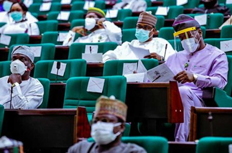 House Of Representatives Moves To Amend The 1999 Constitution, To Make A President, Vice President, Governor, And Deputy Governor, Lose Their Seats, If They Defect To Another Political Party While In Office