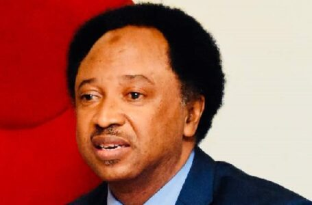 Senator Shehu Sani Declares That If The President Muhammadu Buhari Federal Government Says It Cannot Expose The Names And Faces Of The Sponsors Of Terrorists In The Country, It May Be Responsible For The Killings, Kidnapping, Horror, And Tragedy, Faced By Nigerians Everyday