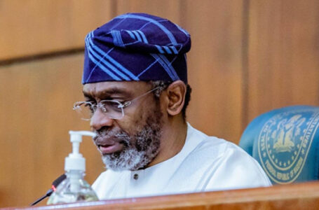 'Rubber Stamp' House Of Representatives Vows Not To Intimidate President Muhammadu Buhari When He Appears Before House, Will Not Ask Any Tough Question