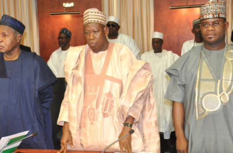 Top APC Chieftain Shames Lazy And Dull Northern States Governors That Sit Down Every Month Waiting For President Muhammadu Buhari's Federal Allocation In Billions Of Naira To Spend, Failing To Harness The Great Potentials Of The Region